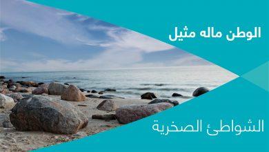 Photo of الوطن ماله مثيل – الشواطئ الصخرية